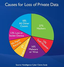 Causes for Loss of Private Data